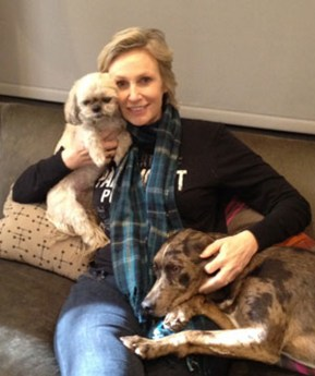 Jane Lynch with her rescues, Olivia and Francis