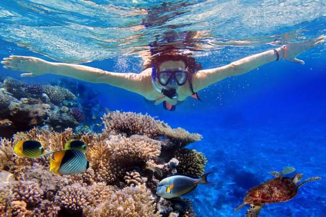 snorkeling-bagi-yang-tidak-bisa-berenang-snorkeling-dasar-2