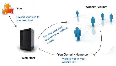 Beginilah Cara Kerja Web Hosting pada Website