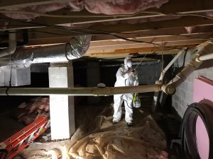 A researcher observes the joists of a home