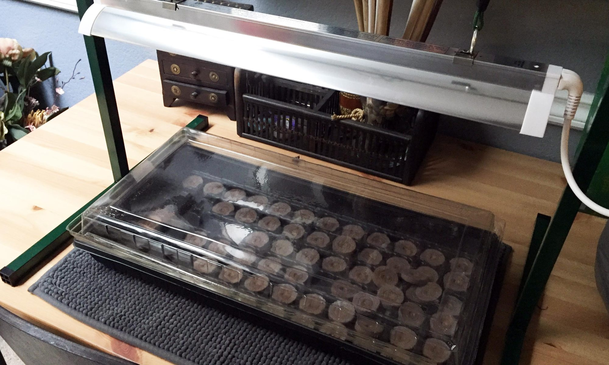 Light stand with seedling tray