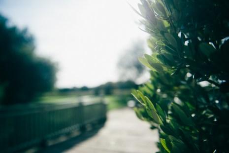 sopley Mill Wedding Photography00152