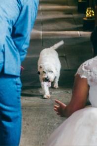 Ashes Barns Endon wedding photography-62