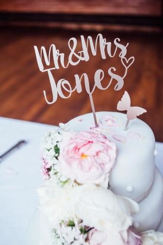 Plas Dinam Wedding Photography-271