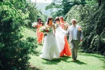 Plas Dinam Wedding Photography-47