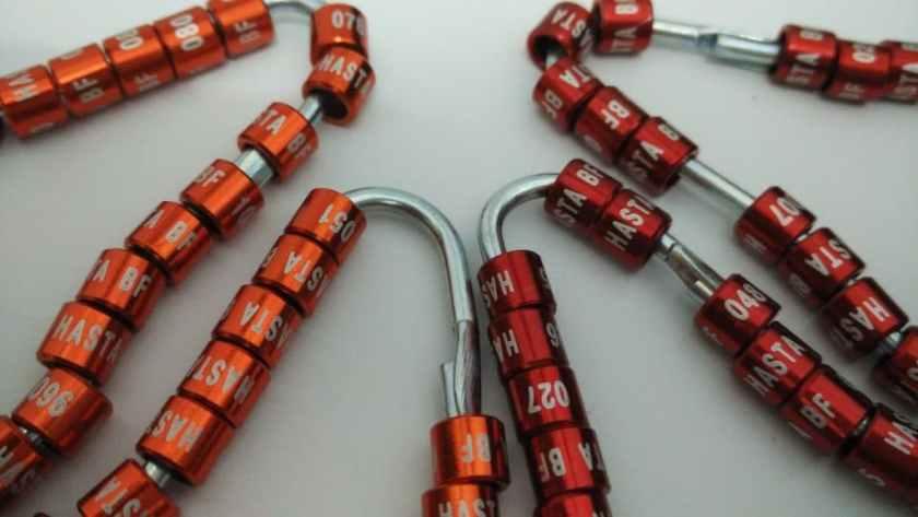 Ring Laser 1 Baris