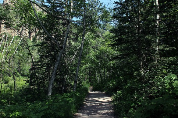 Roughlock Falls Trail... gentle and easy to walk.