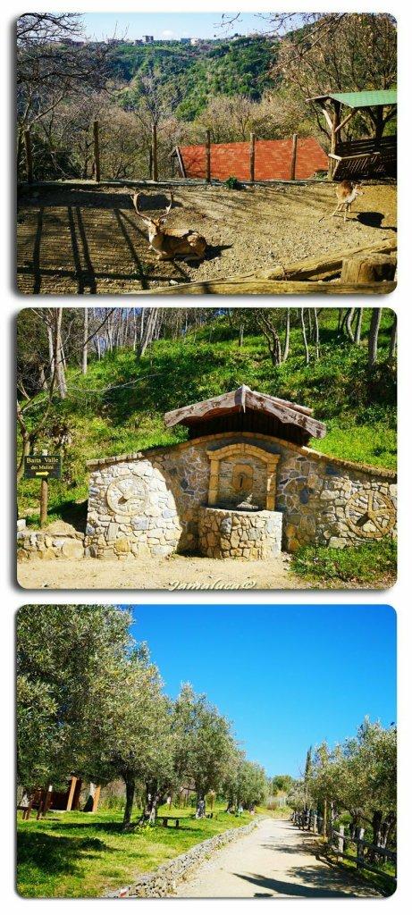 Valle dei Mulini Catanzaro Parco
