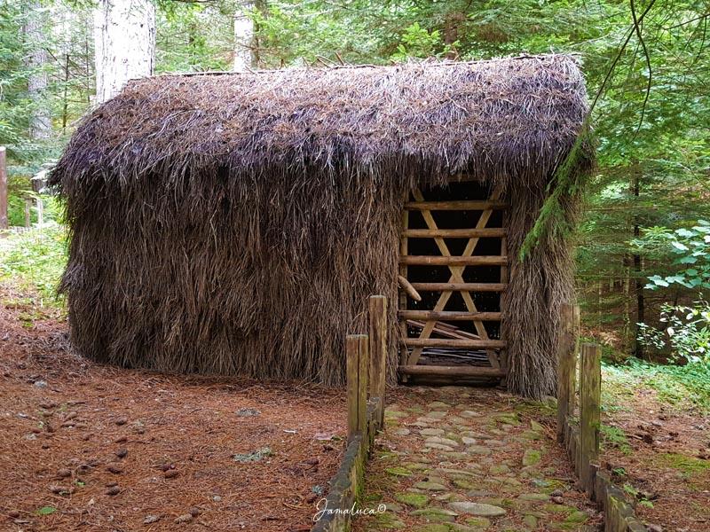 Centro visite Garcea Antico Villaggio Rurale della Sila 2