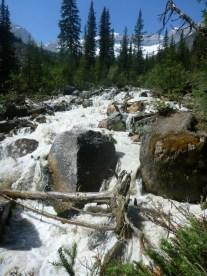 Glacier Stream, Banff National Park
