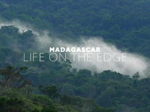 Madagascar Life On The Edge 1