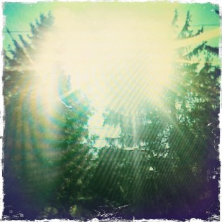 Starburst Glare, Devon PA (Rephotographed) (1)