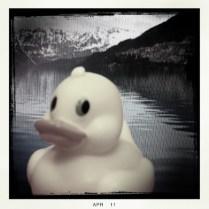 Ducky on Tour, 1