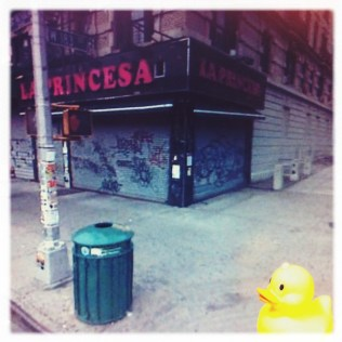Ducky on the Corner