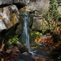 Eureka Springs Photowalk