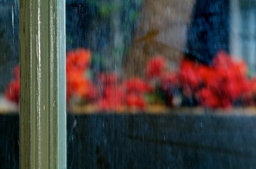 365 315 still need cleaning 20121107©JamesECockroft