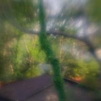 7 52 15 Lens Babylight©JamesECockroft 20130409