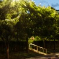 7 52 268©JamesECockroft 20130625