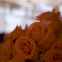 Wedding Day284©JamesECockroft 20130829