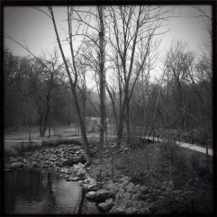 Crystal Bridges-9