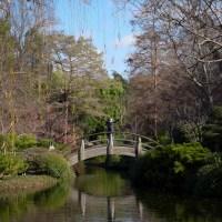 Hana at the Fort Worth Botanical Gardens LX744©JamesECockroft 20140104