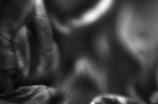 darktable test|0005|©20140215-JamesECockroft