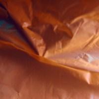 20160123 1609 red plastic bag ©JamesECockroft 3064