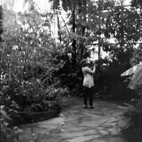 20160821 0941 Random FW Botanical Garden Random ©JamesECockroft 0223