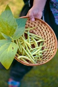 20160530-1019-First Harvest-©JamesECockroft-5377-wife