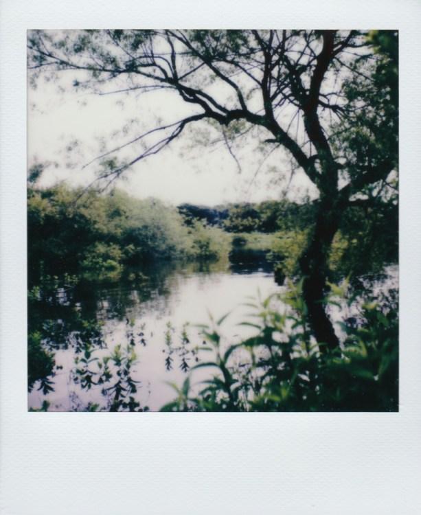 grapevine-lake-underwater258