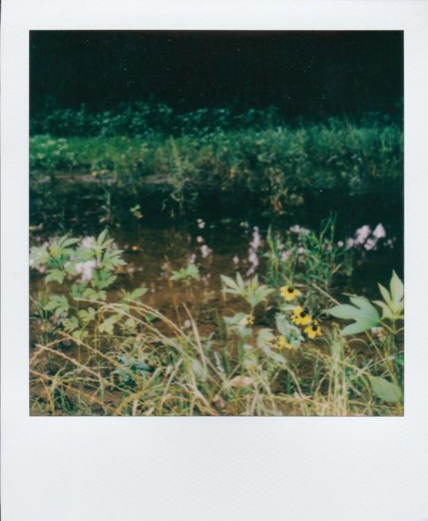 grapevine-lake-underwater270