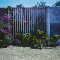 Costa Rica 130©JamesECockroft 20150228