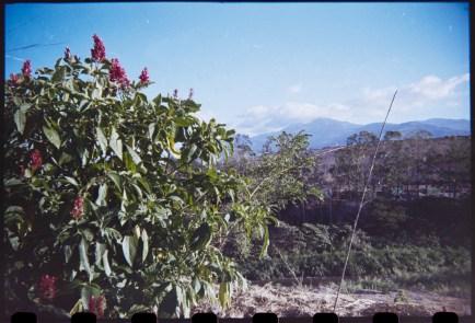 Costa Rica 1|45|©JamesECockroft-20150228