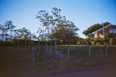 Cariari Photowalk 1 48 ©JamesECockroft-20150228