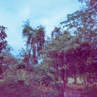 Costa Rica 3 ©JamesECockroft 2015030154