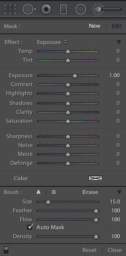 LR5 brush panel