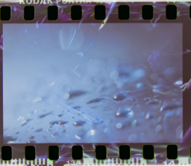 Lens Tests16©JamesECockroft 20150426 Corel AfterShot Pro 21