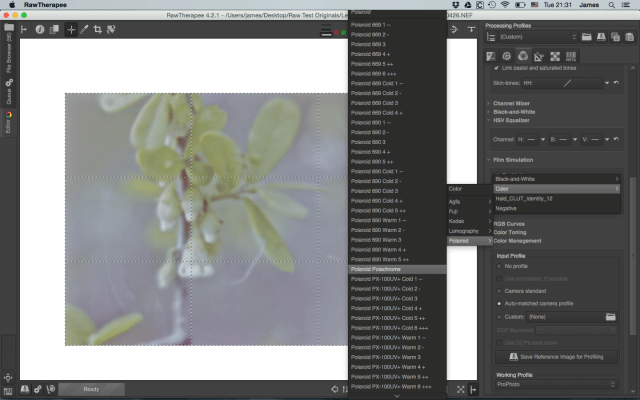 a small sample of film simulations