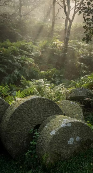 Bolehill Millstones in the Mist - Peak District Photography