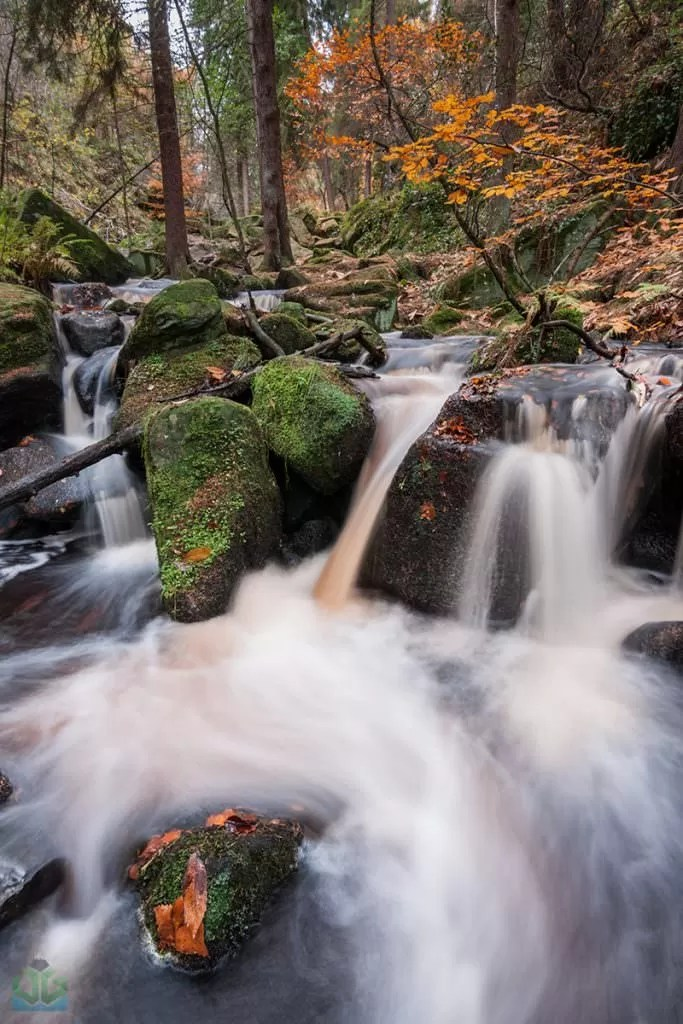 Wyming Brook - Autumn in the Peak District