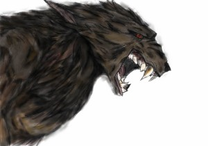 Drawn to Life Werewolf