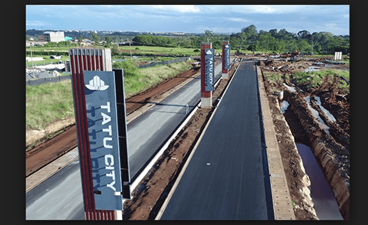 Invest in Tatu City at your own risk, former CBK Governor Nahashon Nyaga warns