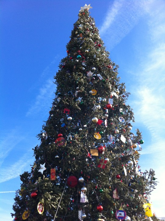 Capital Christmas tree