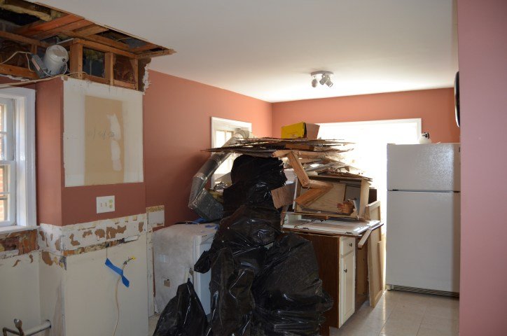 Kitchen Remodel East 1, Day