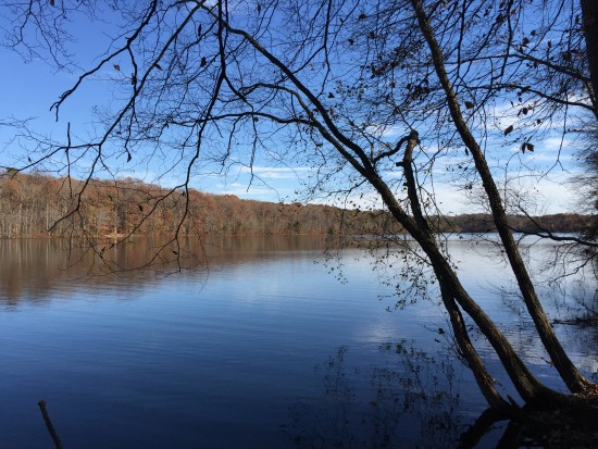 Burke Lake, November 2015