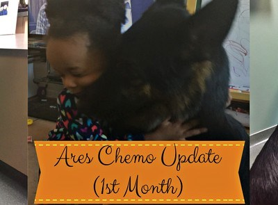 Ares Chemo Update: 1st Month