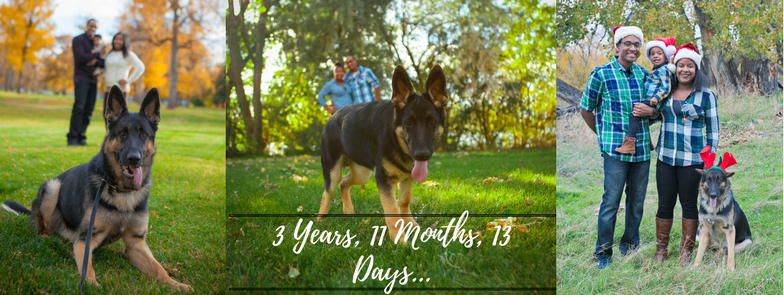 3 years, 11 months, 13 days