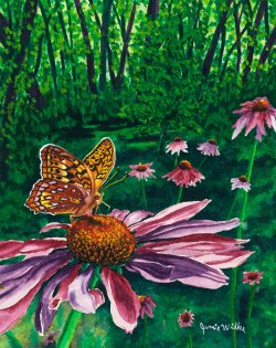Great Star Spangled Fritillary - watercolor by Colorado Artist Jamie Wilke