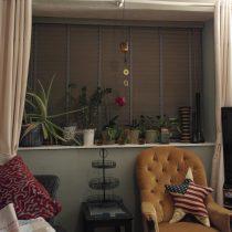 JamJarGill: Living Room: New Blind