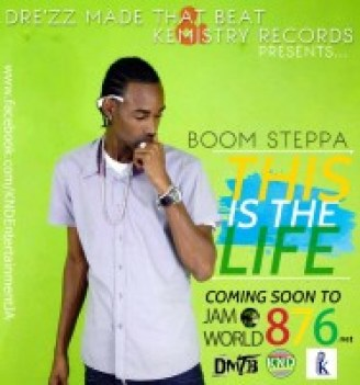 This is the life PROMO